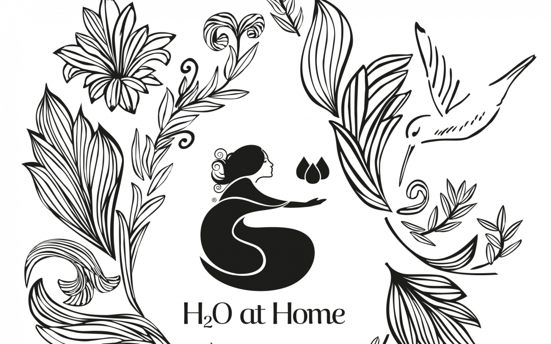 Earn Free or Discounted H2O at Home Products